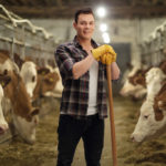 man inside barn with cows